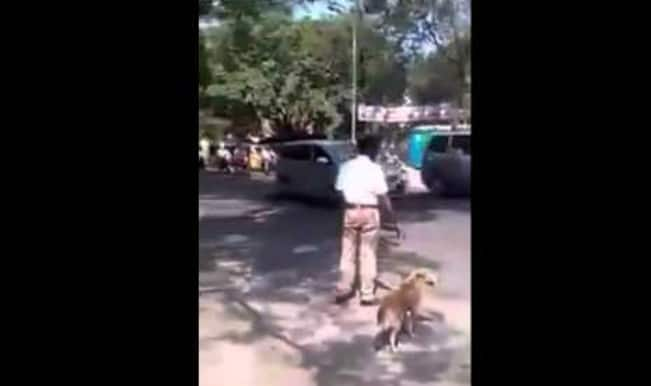 This heart touching video of traffic policeman helping a dog cross road goes viral!