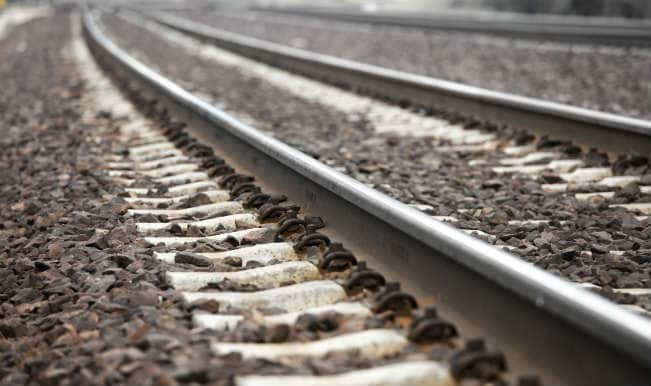 5 lakh trees to be planted along rail track in Punjab, Haryana