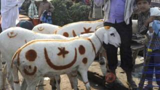 बकरीद के पावन त्यौहार पर, प्रधानमन्त्री नरेंद्र मोदी ने दी बधाई