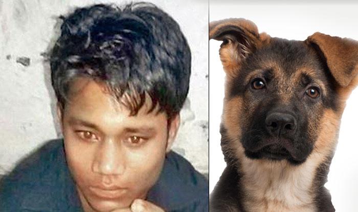 Секс пёс