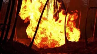 Fire Breaks Out at a Building in Mumbai's Andheri Early Today Morning, Another One in Thane's Godown