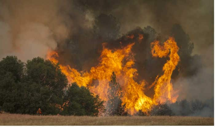 California fires destroy over 1,500 homes