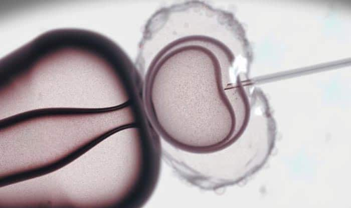 IVF and Hypertension: New Association Uncovered during Adolescence