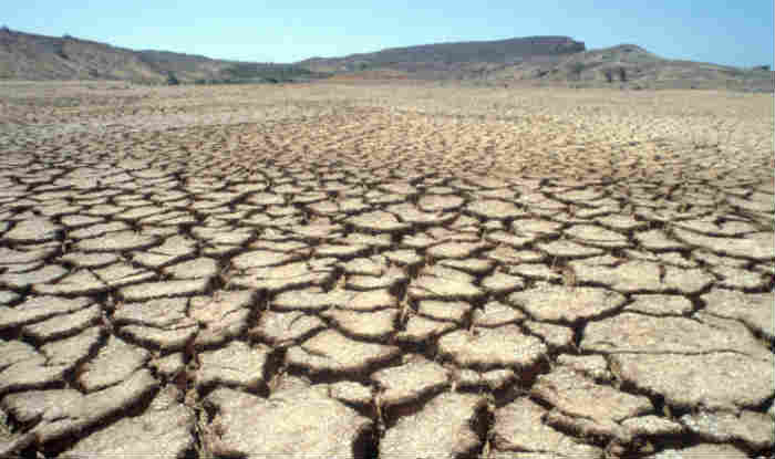 93 tehsils across Chhattisgarh declared drought-hit