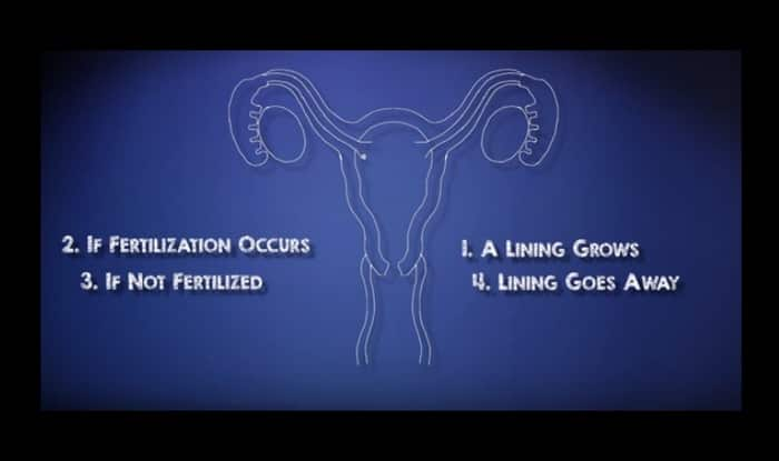 Why do women menstruate? Know about the Biology Behind Periods (Watch video)