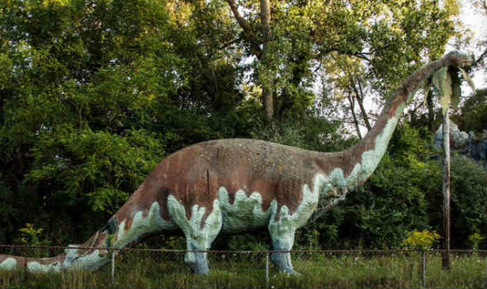 Two new nesting sites of dinosaurs found in Madhya Pradesh