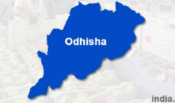 Central team to visit Odisha to assess drought situation
