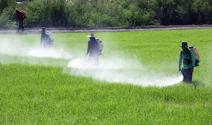pesticides - THESE 9 products banned abroad but widely available in India