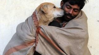 7 Instances that prove dogs are a man's best friend!