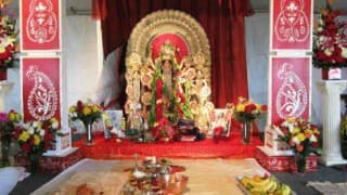 Theme pujas dominate this year's Durga Puja festival