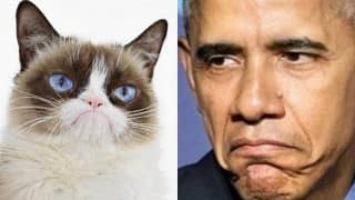 Are Republicans like Grumpy Cat? Barack Obama thinks so! (Video)
