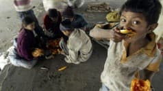 India Ranks 102 on Hunger Index Below Pakistan, Bangladesh, Claims Report