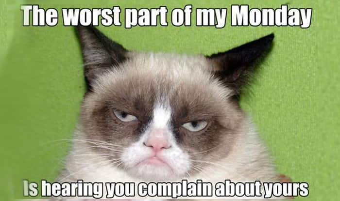 001 21 grumpy cat memes you can relate to every monday of your life