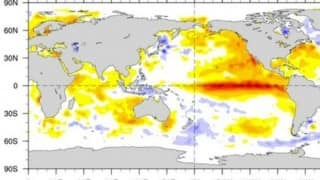 El Nino worst in over 15 years, severe impact likely: UN
