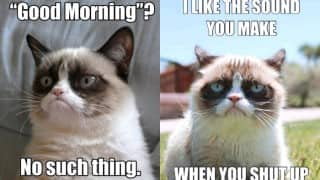 21 Grumpy Cat memes to instantly make you grumpy however happy you are!