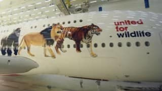 Emirates special: United for Wildlife Airbus A380 livery (Watch video)