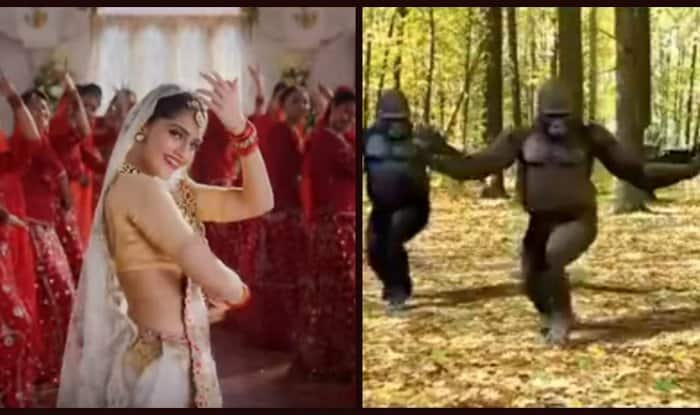 Prem Ratan Dhan Payo Title Song Parody With Sonam Kapoor And The Apes Will Make You Die Laughter