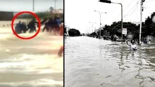 Bikers form human chain to save fellow biker in flood-hit Chennai (Video)