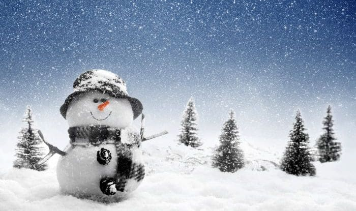 Image result for snow theme