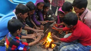 Cold wave in North India, Government schools in Delhi to remain closed till Jan 19