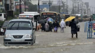 Southern India likely to see higher than normal rainfall: UN