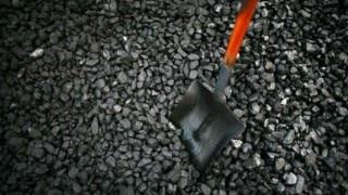 Coal scam: Court dismisses Devendra Darda's plea to go abroad