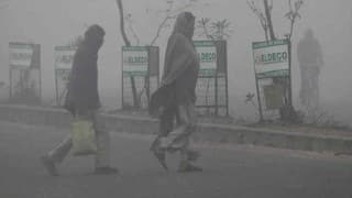 Cold Wave Grips North India as Temperature Settles Below Freezing Point in Parts of Jammu & Kashmir, Himachal Pradesh