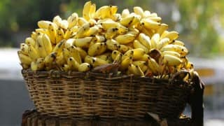Andhra Pradesh Teacher Forced to Sell Bananas After Losing Job Amid COVID-19, Struggles to Pay Loan For Child's Medical Treatment