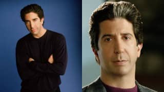David Schwimmer finds fame 'painful'