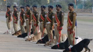 Republic Day Parade 2016: Watch adorable Army dog squad walk at Rajpath after 26 years!