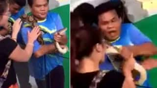 Chinese woman gets bitten trying to kiss a snake!