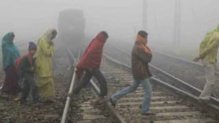 Cold wave grips parts of Punjab and Haryana, fog disrupts normal life