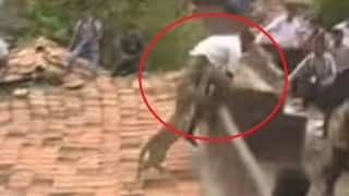 Leopard attacks villagers in Maharashtra; video goes viral on WhatsApp