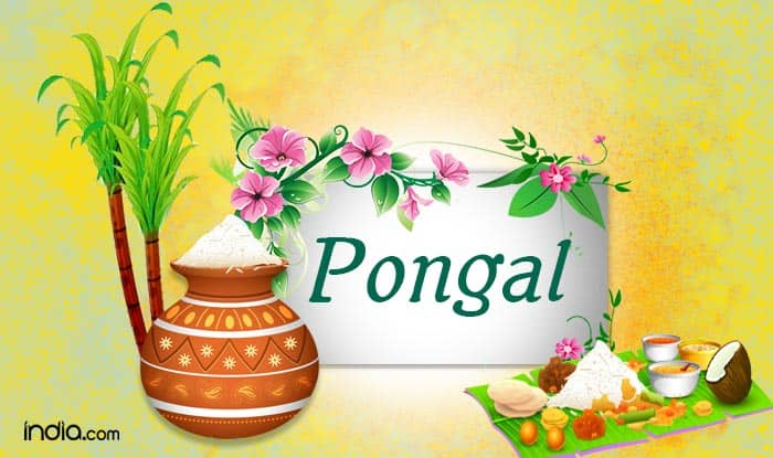 Pongal 2017 happy pongal wishes whatsapp status facebook messages pongal 2017 happy pongal wishes whatsapp status facebook messages sms gif m4hsunfo