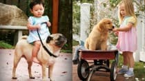 Watch how these cute babies take their dogs out for a walk!