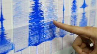 Two light intensity quakes hit northeast in early hours