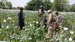 Allahabad: 144 kgs opium seized, two arrested