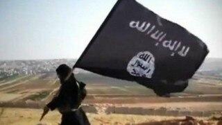 UN's R2P law best solution to Syrian crisis: US political scientist