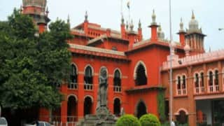Madras High Court asks Centre to pass order on plea on sea cucumber trade