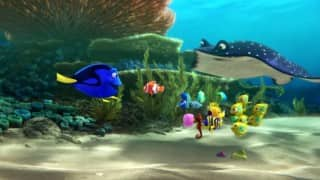 Finding Nemo's sequel Finding Dory trailer is the most adorable thing you will ever see!