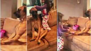 Little girl plays doctor with her pet dog!