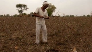 Farmers demand compensation for crop loss