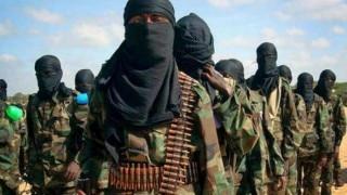 Seven Afghan militants killed in coalition drone strike