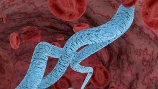 Fresh Ebola outbreak claims one in Liberian capital