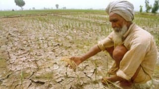 Maharashtra: Drought-hit farmers to get Rs 1272 crore interest on crop loan