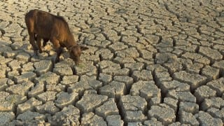 'Water train' leaves Miraj for drought-hit Latur