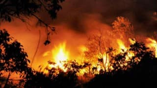 Uttarakhand Forest Fires: Centre sends MI-17 helicopters for saving fauna