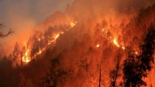 Rajnath Singh reviews forest fire situation in Uttarakhand
