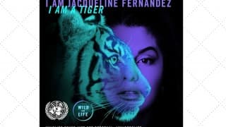 Jacqueline Fernandez Joins UN Campaign to Halt Illegal Animal Trade