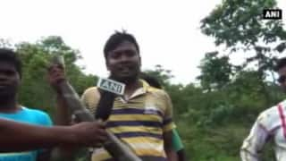 Watch:15-foot-long rare Cobra caught in Mayurbhanj district of Odisha